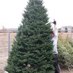 Man standing next to Christmas tree with hand up
