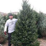 Man standing next to Christmas Tree